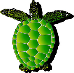 1061 - Large Sea Turtle - 1061