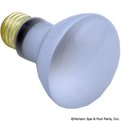 57-110-1214 - Light Bulb, R20, Flood Lamp, 100W, 120V (NOW 60W HALOGEN) - Replaced By Part 57-555-1007 - 79108000 - UPC - 788379698270 - 57-110-1214