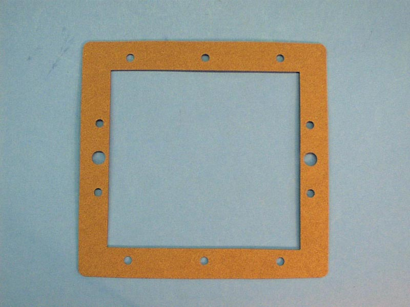 172471 - Filter Face Plate Front Gasket,RAINBOW, DSF Series - 172471
