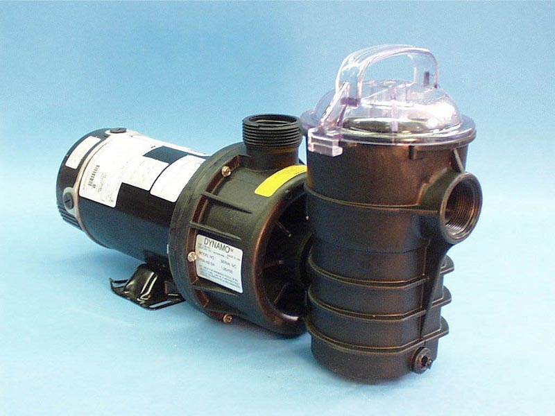 34-0204 - Pump Assy,PENTAIR,Dynamo,CD,1HP,2Spd,120V,48 Frame,w/Hair & - 34-0204