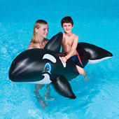 Swimming Pool Floats Inflatables Floating Lounge Chairs Mattresses And Fast Set Pools