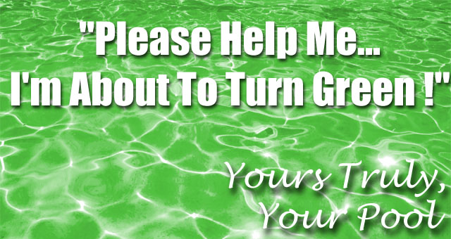 Get The Chlorine And Shock You Need To Keep It Clear - PoolAndSpa.com