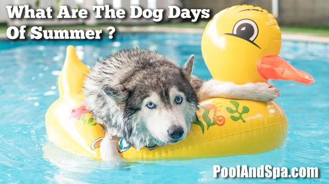 What Are The Dog Days of Summer? - PoolAndSpa.com News